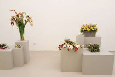 "Ausstellung ""Flowers are documents"""